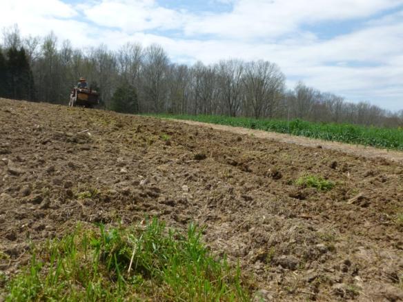 new field