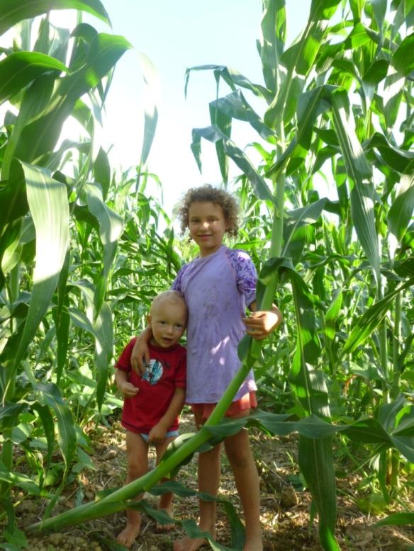 kids corn