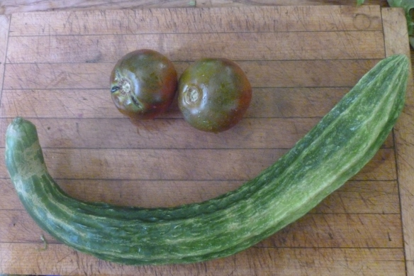 cukes and tomatoes