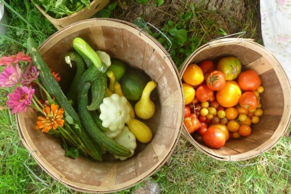 small harvest 3