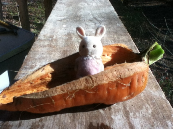 carrots become toys... a little boat for a little bunny.