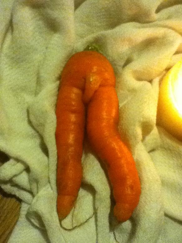 fine carrot art