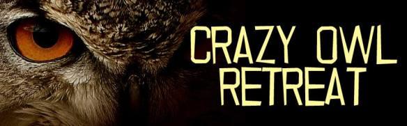 crazy owl banner
