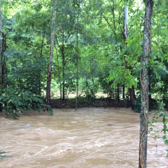 floodagain