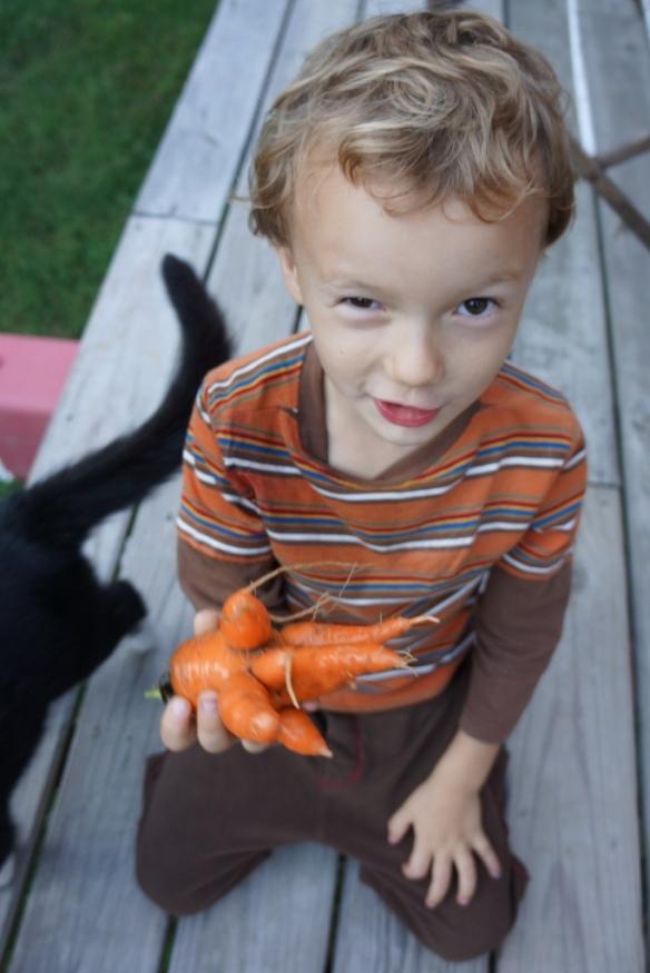levon carrot